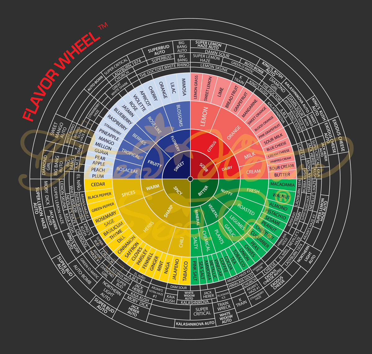 Green house seed co flavor wheel flavor wheel nvjuhfo Images