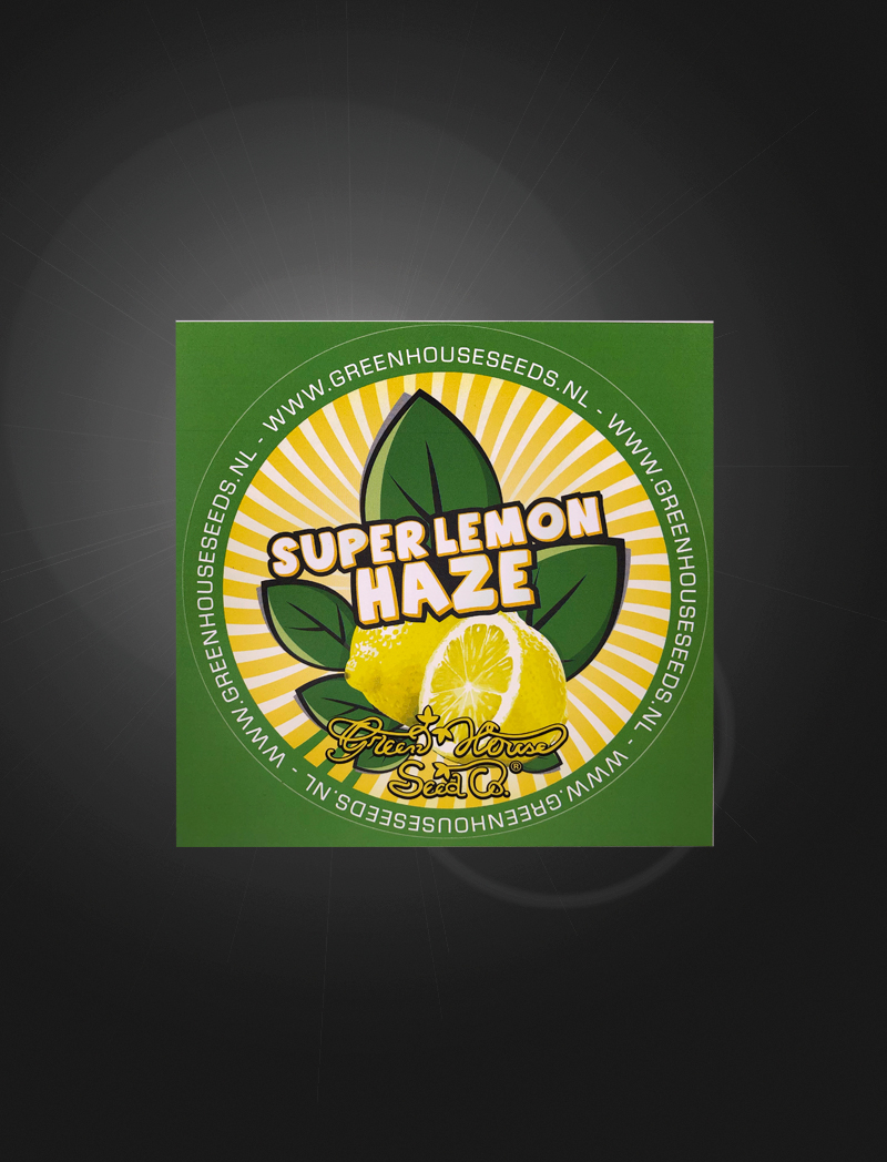 Super-Lemon-Haze