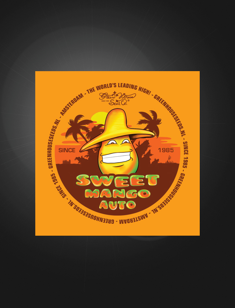 Sweet Mango Auto   Sticker
