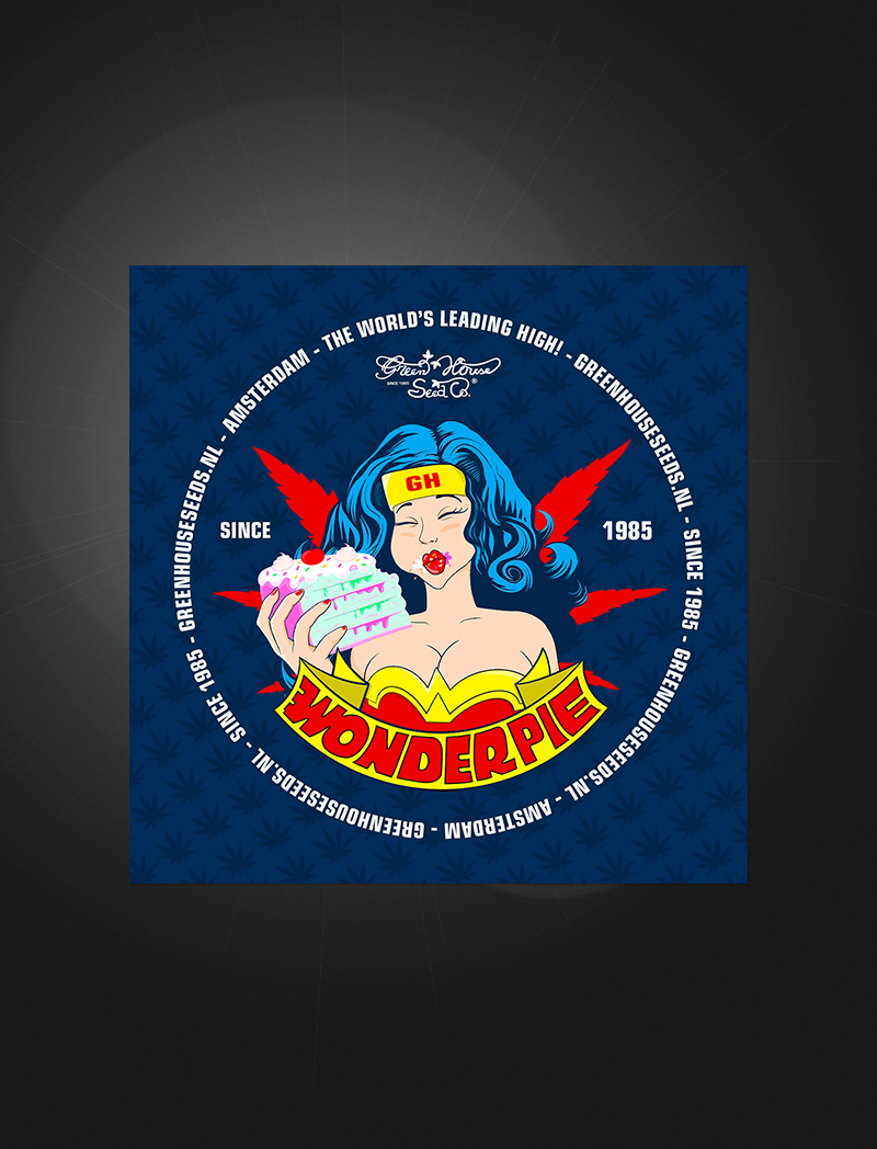 Wonder Pie   Sticker
